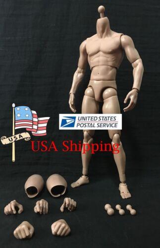 ZC TOYS Male Body Model TTM19 1//6 scale Action Figure Accessoried