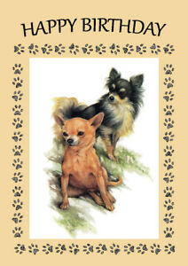 Image Is Loading CHIHUAHUA TWO DOGS DOG BIRTHDAY GREETINGS NOTE CARD