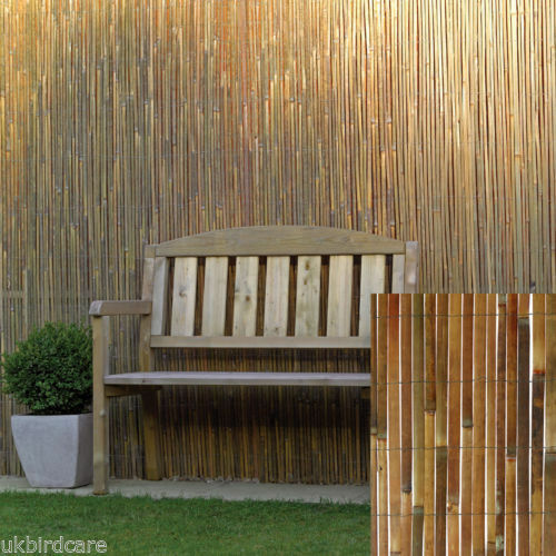 windbreaks balconies for gardens 1m tall x 3m long Bamboo screening