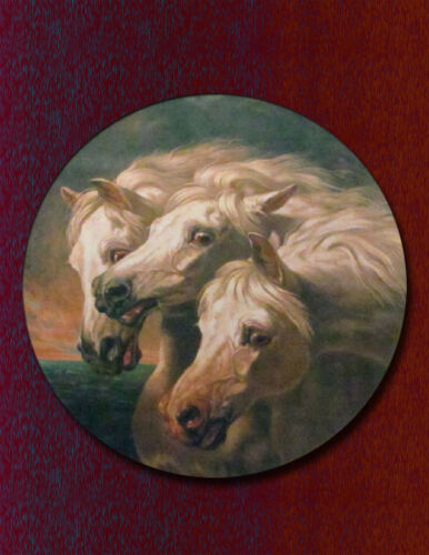 Vintage Horse//Equestrian Art Print//Poster Reproduction//Pharaoh/'s Horses