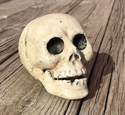 Bookend Cast Iron Vintage-Style Full Skeleton Skull Head Paperweight