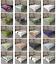 Ambesonne-Tree-Bloom-Flat-Sheet-Top-Sheet-Decorative-Bedding-6-Sizes thumbnail 1