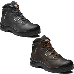 Dickies Davant II Safety Work Boots