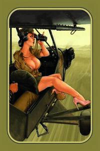 Army-piloto-pin-up-girl-chapa-escudo-Escudo-jadeara-metal-Tin-sign-20-x-30-cm