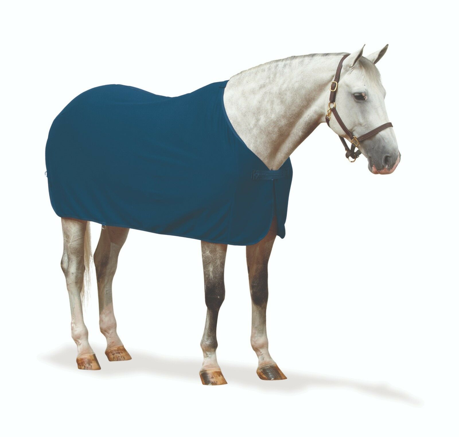 Centaur Turbo-refrigerador de vestir seco-Azul Marino-tamaños diferentes