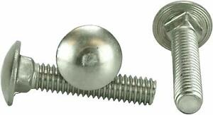Stainless Steel Carriage Bolt 100-5//16-18 x 1-1//4