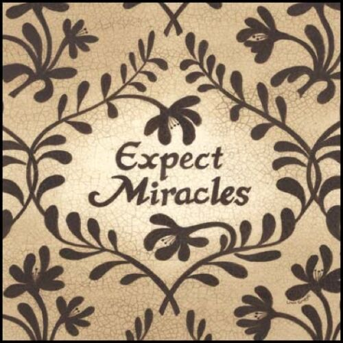 LS840-R Art Print Expect Miracles Framed or Plaque by Linda Spivey