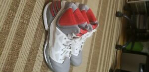 Adidas-CLU-600001-D-ROSE-12-11-grey-red-Baketball-Shoes-Size-US-13