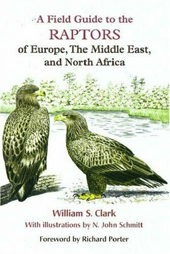 A Field Guide to the Raptors of Europe, the Mi... by Clark, William S. Paperback