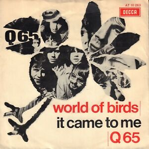 Q65-World-Of-Birds-It-Came-To-Me-1967-GARAGE-ROCK-SINGLE-7-034-HOLLAND