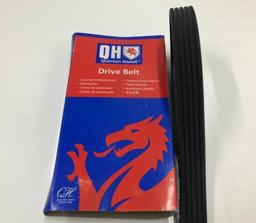 FAN BELT 5 RIB x 725 5PK725 GENUINE QH ALTERNATOR DRIVE BELT