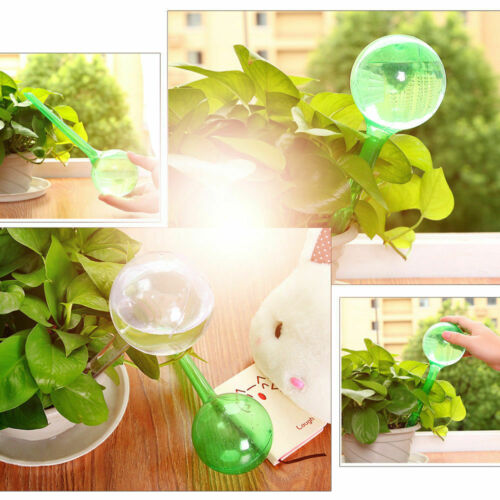 1Pc Automatic Watering Globes Plant Self Watering Bulb Fit Garden Houseplant UK