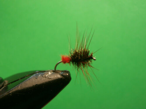 1 DOZEN  RED TAIL FLIES FOR FLY FISHING DRY-2