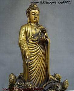 onlineshop 15 Tibet Bronze Lotus Flower Sakyamuni Amitabha Buddha ...