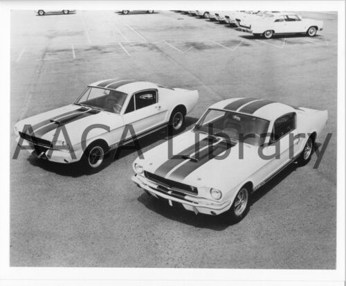 1965 Ford 2 Shelby Mustang GT350 Two Door Hardtops Ref. # 74704 Factory Photo
