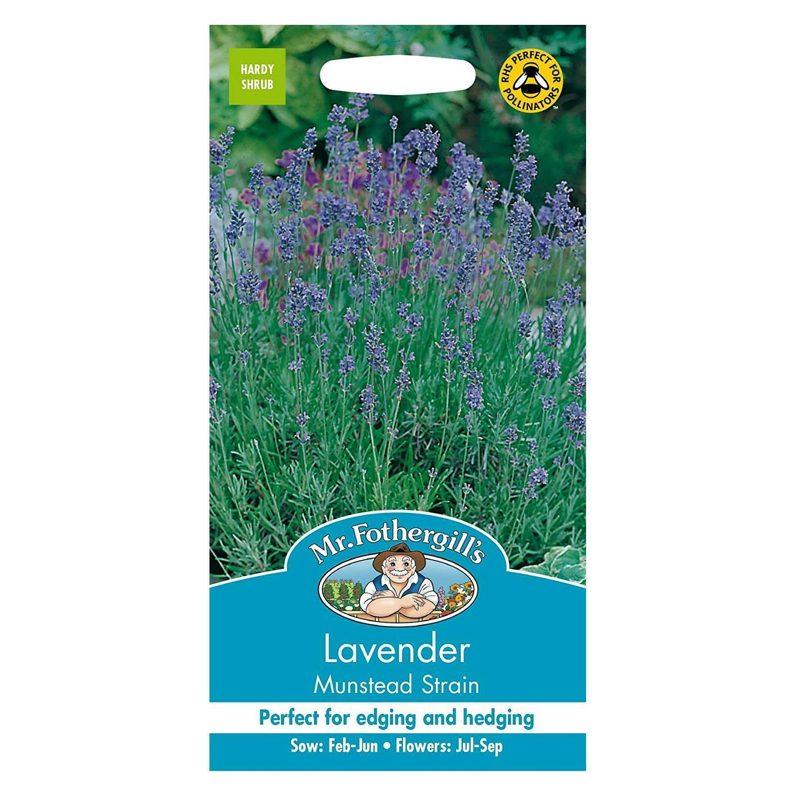 Mr Fothergills Flower Seeds Lavender Munstead Aromatic Plants Attracts Bees
