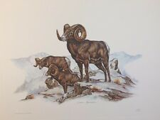 1969 Watercolor Print Artist Clark Bronson Chevy Promo RockyMtn Big Horn Sheep