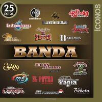 Iconos 25 Exitos Con Banda Audio Cd 2 Discs