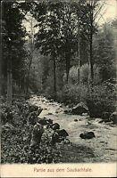 1909 Stempel WILSDRUFF auf AK Saubachtal Sachsen Postkarte Wilde Sau Saubach