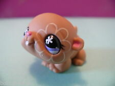 petshop cochon d inde hamster beige / tan guinea pig N° 625