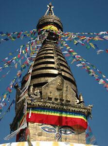 Tibetanische GEBETSFAHNEN,5,80 Meter,Buddhismus,Tibet,