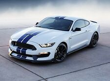 2008 FORD MUSTANG SHELBY GT500KR COBRA CAR POSTER STYLE B 20x36 9MIL PAPER