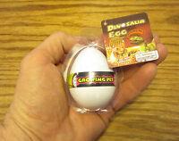6 Growing Pet Dinosaur Eggs Grow Dino Hatching Hatch Egg