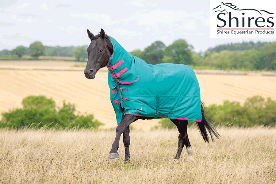 Shires Tempest Original 100g lumièreweight Combo Rug - vert rose