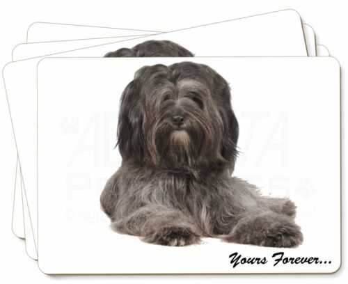 Tibetan Terrier 'Yours Forever' Picture Placemats in Gift Box, ADTT2yP