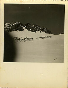 PHOTO-ANCIENNE-VINTAGE-SNAPSHOT-MILITAIRE-CHASSEUR-ALPIN-SKI-MONTAGNE-1
