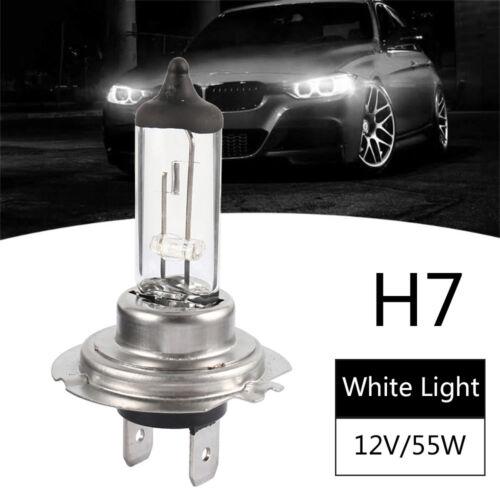 Willkey 2//10x H7 Car Headlamp Headlight Bulb Dipped Beam 477 12v 55w 499 Halogen
