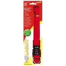 Heitech LED Collier lumineux pour chiens - rouge - 2,5 x 45-50 cm sécurité Nuit