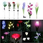 Solar Power Flower LED Light Waterproof Outdoor Garden Yard Lawn Landscape Lamp