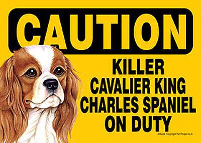 Killer Cavalier King Charles On Duty Dog Sign Magnet Hook & Loop Fastener 5x7