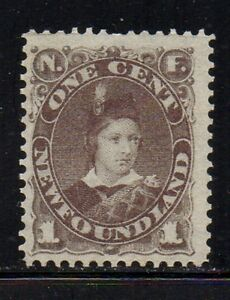 Newfoundland Sc 42 1880 1c gray brown Prince of Wales stamp mint Free Shipping