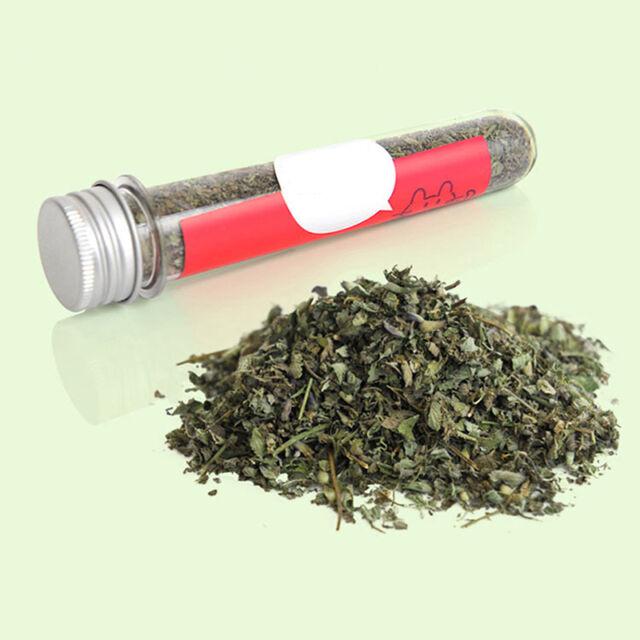40ml Fresh Green Dried Catnip Nepeta cataria Leaf & Flower Herb Cat Supply