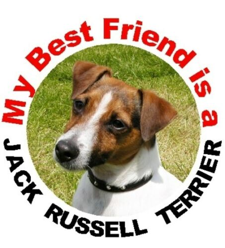 2 Jack Russell Terrier Round Car Stickers No. 2 By Starprint