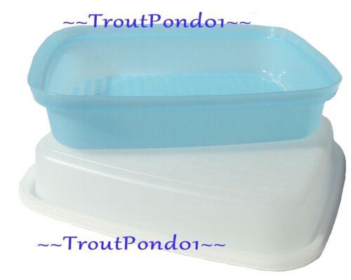 Tupperware Season Serve Marinator Meat Marinade Marinader Sheer Pastel Blue