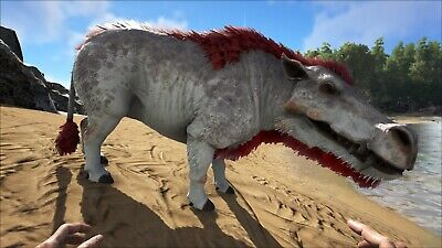Ark Survival Evolved Pc Pve Color Daeodon 20413 Food Ebay Use the results to determine how many points it ark stat calculators should only be used before taming a creature. ark survival evolved pc pve color daeodon 20413 food ebay