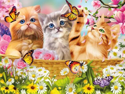 3D Lenticular Picture Cats Kittens with Butterflies and flowers size 39 x 29 cm
