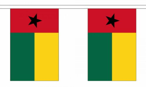6m long with 20 Flags Guinea-Bissau Polyester Flag Bunting