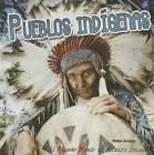 Pueblos Indigenas (Indigenous Peoples) by Robin Michal Koontz (Hardback, 2015)