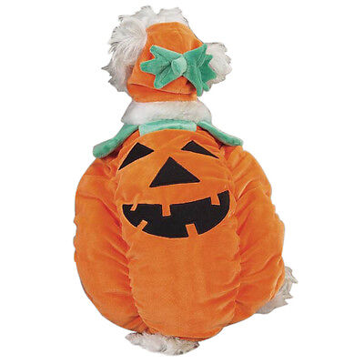Pumpkin Pooch Dog Halloween Costume Pet costumes XS-XL Zack & Zoey