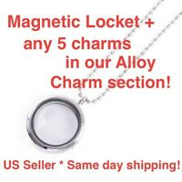 Magnetic Locket + Any 5 Alloy Charms + Free Crystals
