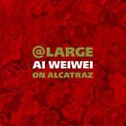 At Large: Ai Weiwei on Alcatraz by Chronicle Books (Hardback, 2015)