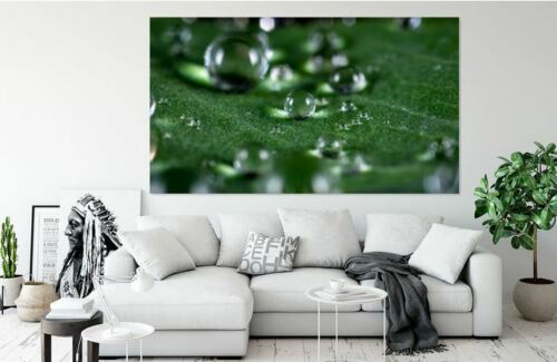 bubblecleancloseupHOME BEAUTIFUL WALL DECOR Art Canvas choose your size