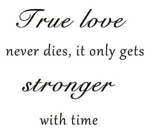True Love Never Dies Wall Vinyl Decal Quote Lettering Words Home
