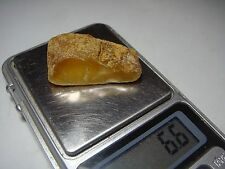 AMBER / raw baltic stones bernstein natural bursztyn baltycki genuine 琥珀 (e6024
