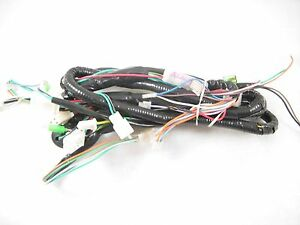 TAOTAO EVO 150CC SCOOTER COMPLETE WIRE HARNESS *NEW* | eBay on hand tool power supply wire harness, cannon plugs wire harness, factory wire harness, wiring harness,