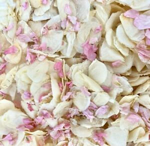 Biodegradable-WEDDING-CONFETTI-Dried-IVORY-Feather-FLUTTERFALL-Real-Petals-Pink